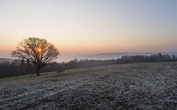 Eisiger Sonnenaufgang bei Huppenbroich im Frühling