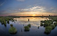 Glühender Sonnenuntergang an einem Palsen im Hohen Venn