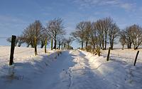 Verschneiter Feldweg bei Steckenborn