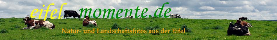 eifelmomente.de - Landschaftsfotos aus der Eifel