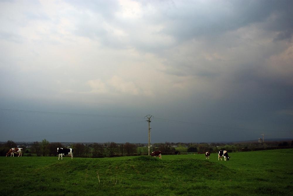 http://www.eifelmomente.de/http://www.eifelmomente.de/albums/Nordeifel/Fruehjahr/2009_04_11_Gewitter_in_Belgien/2009_04_11_-_48_Gewitterzelle_in_Belgien_bearb.jpg