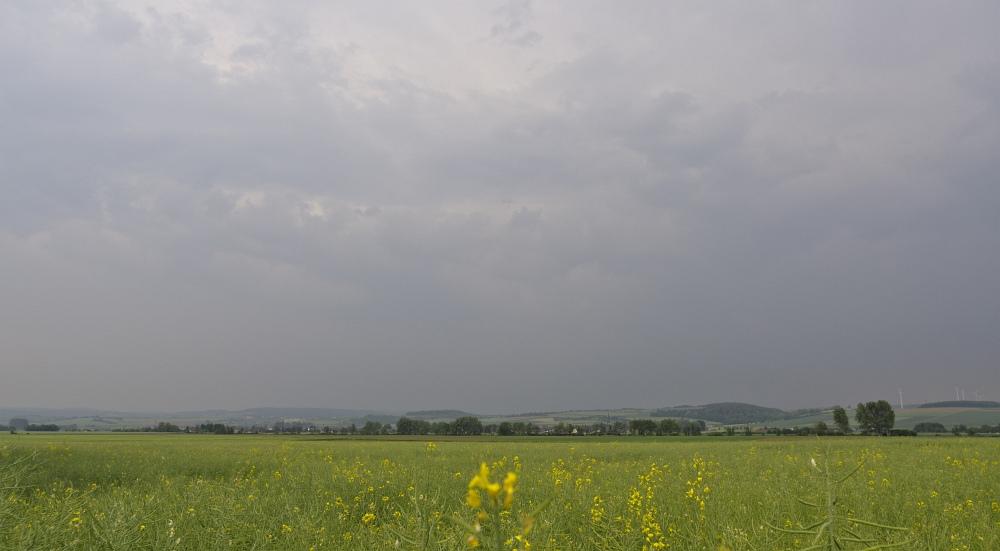 http://www.eifelmomente.de/albums/Nordeifel/Fruehjahr/2011_05_10_Chasing_Eifel_und_Rheinland/2011_05_10_-_29_Bei_Eppenich_DNG_bearb_ausschn.jpg