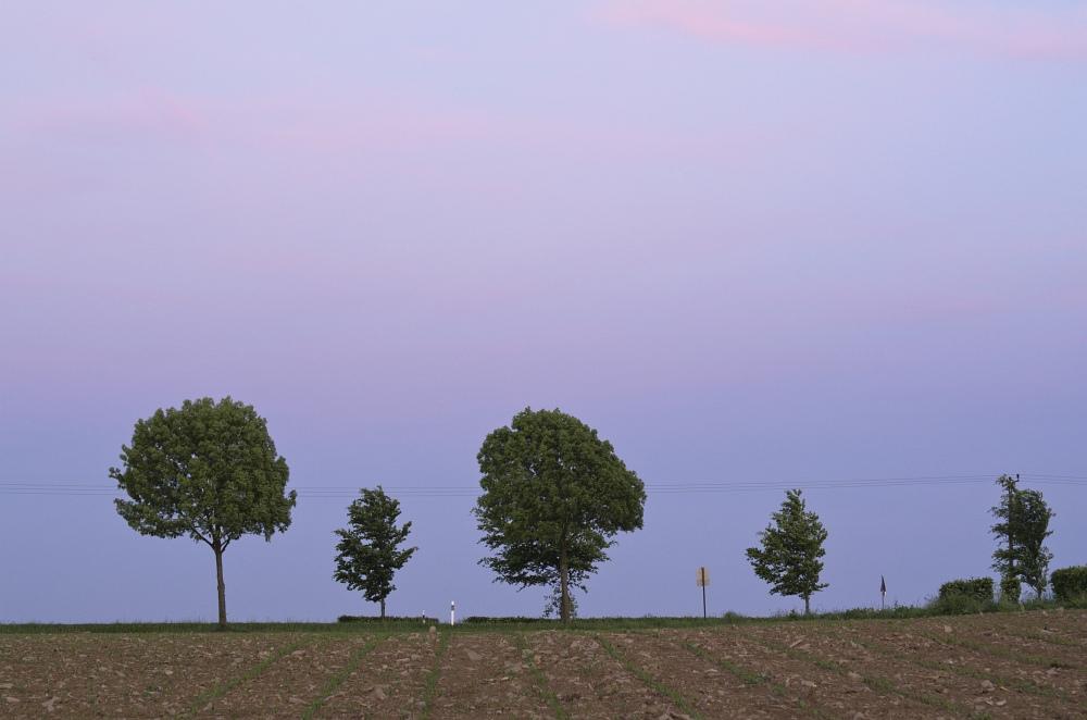 http://www.eifelmomente.de/albums/Nordeifel/Fruehjahr/2011_05_22_Schauer_Sonnenuntergang_Nachtaufnahmen/2011_05_22_-_68_Windpark_Strauch_DNG_bearb.jpg