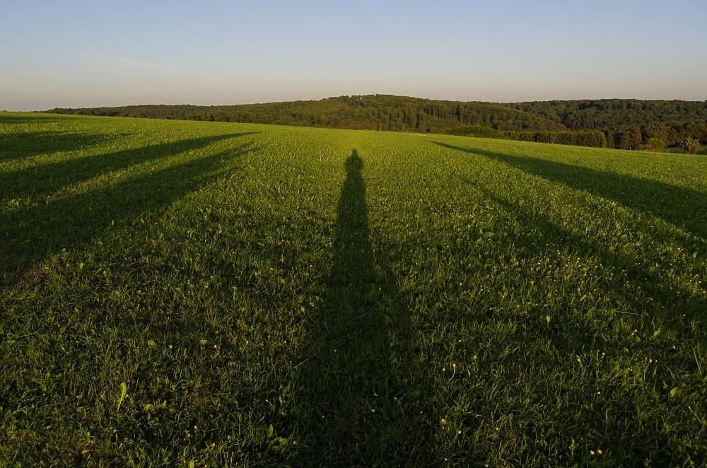 http://www.eifelmomente.de/albums/Nordeifel/Fruehjahr/2012_05_26_Orchideen_Eifel/2012_05_26_-_122_Bei_Alendorf_DNG_bearb.jpg