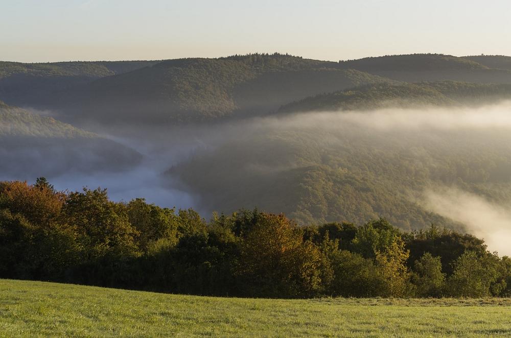 http://www.eifelmomente.de/albums/Nordeifel/Herbst/2012_09_30_Sonnenaufgang_NP/2012_09_30_-_166_Bei_Morsbach_DNG_bearb.jpg
