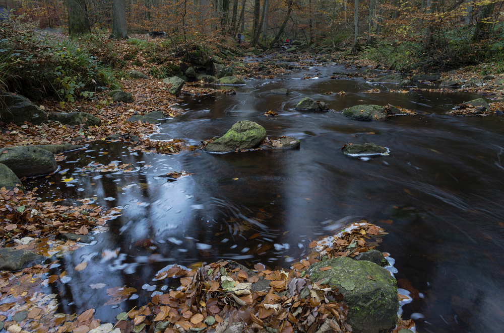 http://www.eifelmomente.de/albums/Nordeifel/Herbst/2015_Herbst/2015_10_31_-_039_Hoegne_DNG_bearb.jpg
