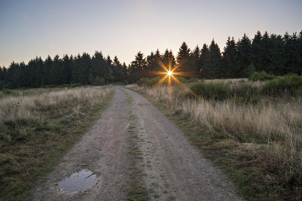 http://www.eifelmomente.de/albums/Nordeifel/Herbst/2016_09_28_10_05_Nationalpark_Eifel/2016_10_05_-_053_Bei_Dreiborn_DNG_DRI_bearb.jpg