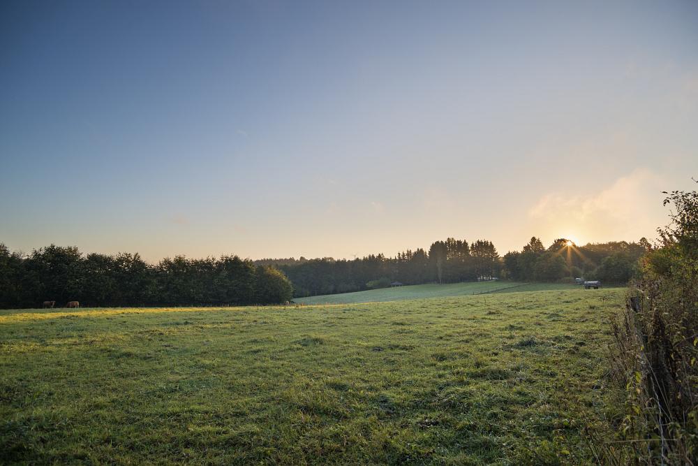http://www.eifelmomente.de/albums/Nordeifel/Herbst/2016_09_28_10_05_Nationalpark_Eifel/2016_10_05_-_062_Bei_Dreiborn_DNG_DRI_bearb.jpg