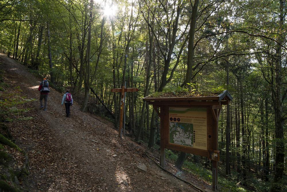 http://www.eifelmomente.de/albums/Nordeifel/Herbst/2016_09_28_10_05_Nationalpark_Eifel/2016_10_05_-_412_Urfttal_DNG_bearb.jpg
