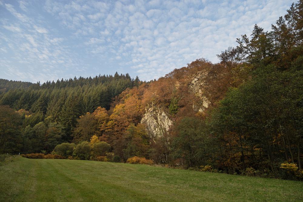 http://www.eifelmomente.de/albums/Nordeifel/Herbst/2016_10_23-26_Bei_Monschau/2016_10_26_-_029_Bei_Hammer_DNG_DRI_bearb.jpg