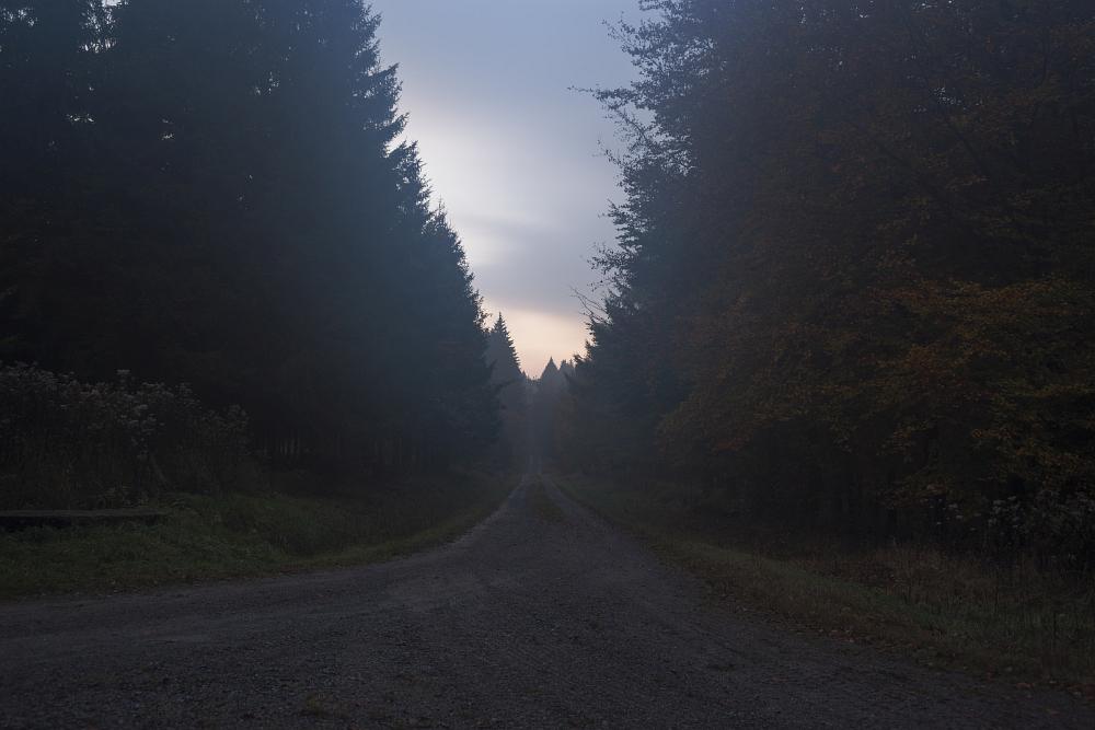 http://www.eifelmomente.de/albums/Nordeifel/Herbst/2016_10_29-31_Herbstabende/2016_10_29_-_059_Huertgenwald_DNG_bearb.jpg