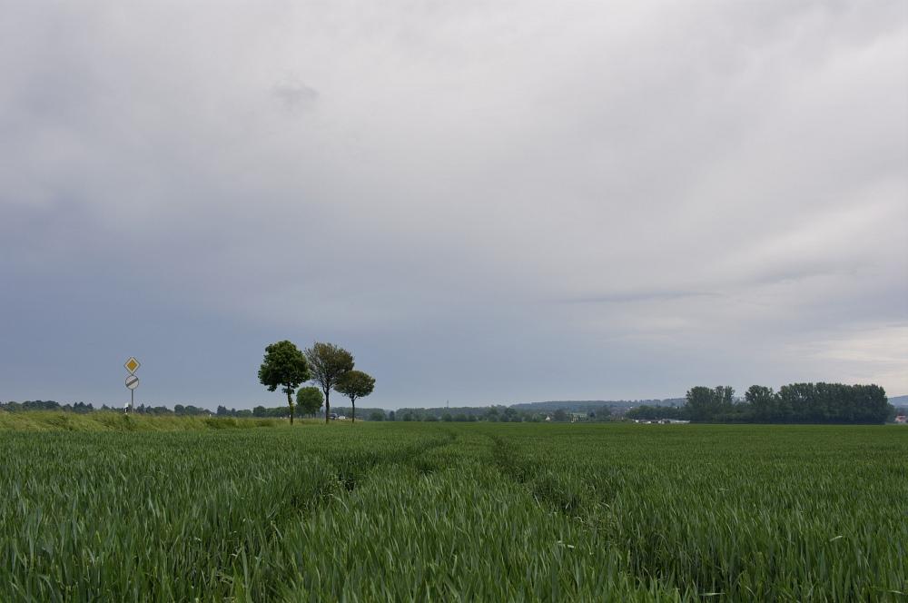 http://www.eifelmomente.de/albums/Nordeifel/Sommer/2010_06_06_Chasing_Kreis_Dueren_und_Holland/2010_06_06_-_34_Guerzenich_DNG_bearb.jpg