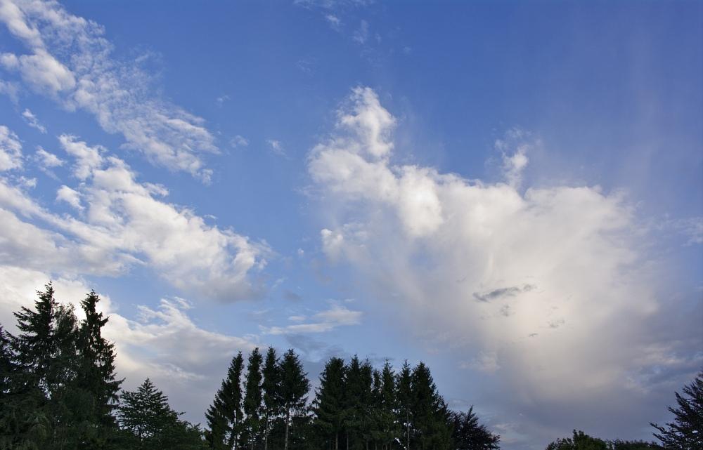 http://www.eifelmomente.de/albums/Nordeifel/Sommer/2010_07_16-17_Nachtgewitter_Nordeifel/2010_07_16_-_04_Gewitterwolken_am_Abend_DNG_bearb_ausschn.jpg