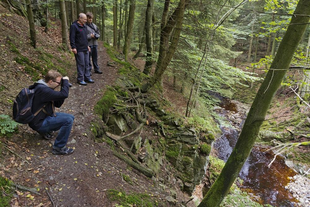 http://www.eifelmomente.de/albums/Nordeifel/Sommer/2011_Sommer/2011_07_31_-_38_Wanderung_Getzbachtal_DNG_bearb.jpg