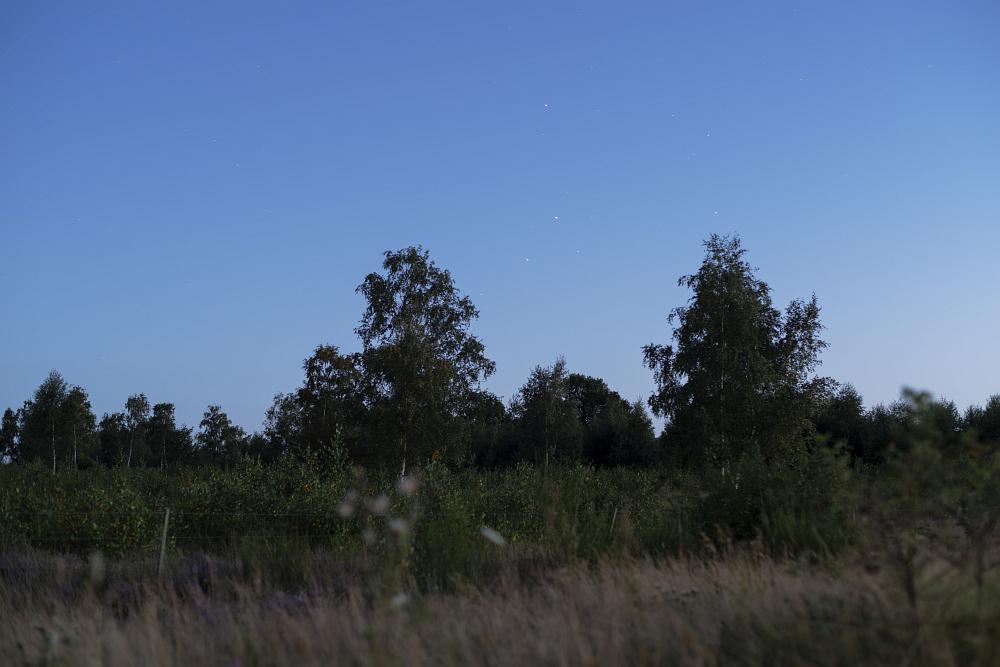 http://www.eifelmomente.de/albums/Nordeifel/Sommer/2016_Sommer/2016_08_22_-_091_Drover_Heide_DNG_bearb.jpg