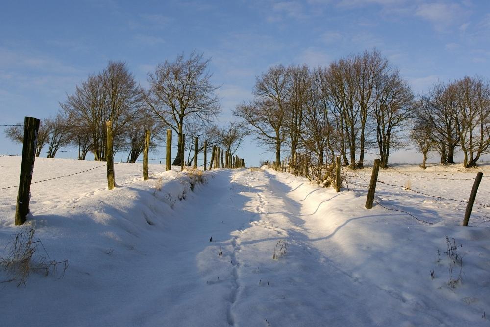 http://www.eifelmomente.de/albums/Nordeifel/Winter/2009_12_19_Winterspaziergang_bei_Steckenborn/2009_12_19_-_049_Winterspaziergang_bei_Steckenborn_DNG_bearb_ausschn.jpg