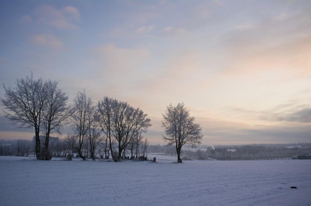 http://www.eifelmomente.de/albums/Nordeifel/Winter/2010_01_04_Sonnenuntergang_im_Winterwunderland/2010_01_04_-_02_Am_Gericht_DNG_bearb.jpg