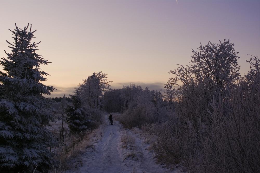 http://www.eifelmomente.de/albums/Nordeifel/Winter/2010_01_04_Sonnenuntergang_im_Winterwunderland/2010_01_04_-_22_Winterwunderland_bei_Muetzenich_DNG_bearb.jpg
