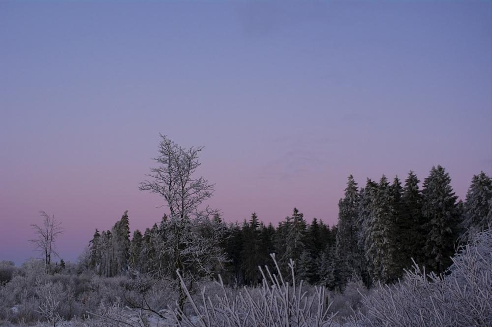 http://www.eifelmomente.de/albums/Nordeifel/Winter/2010_01_04_Sonnenuntergang_im_Winterwunderland/2010_01_04_-_23_Winterwunderland_bei_Muetzenich_DNG_bearb.jpg