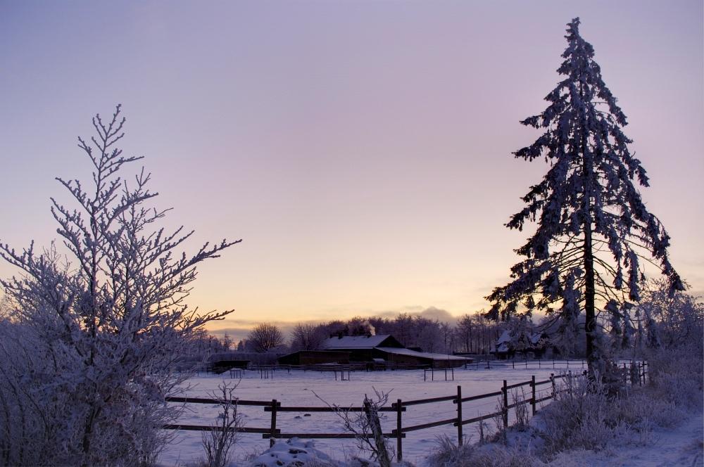 http://www.eifelmomente.de/albums/Nordeifel/Winter/2010_01_04_Sonnenuntergang_im_Winterwunderland/2010_01_04_-_30_Winterwunderland_bei_Muetzenich_DRI_bearb.jpg