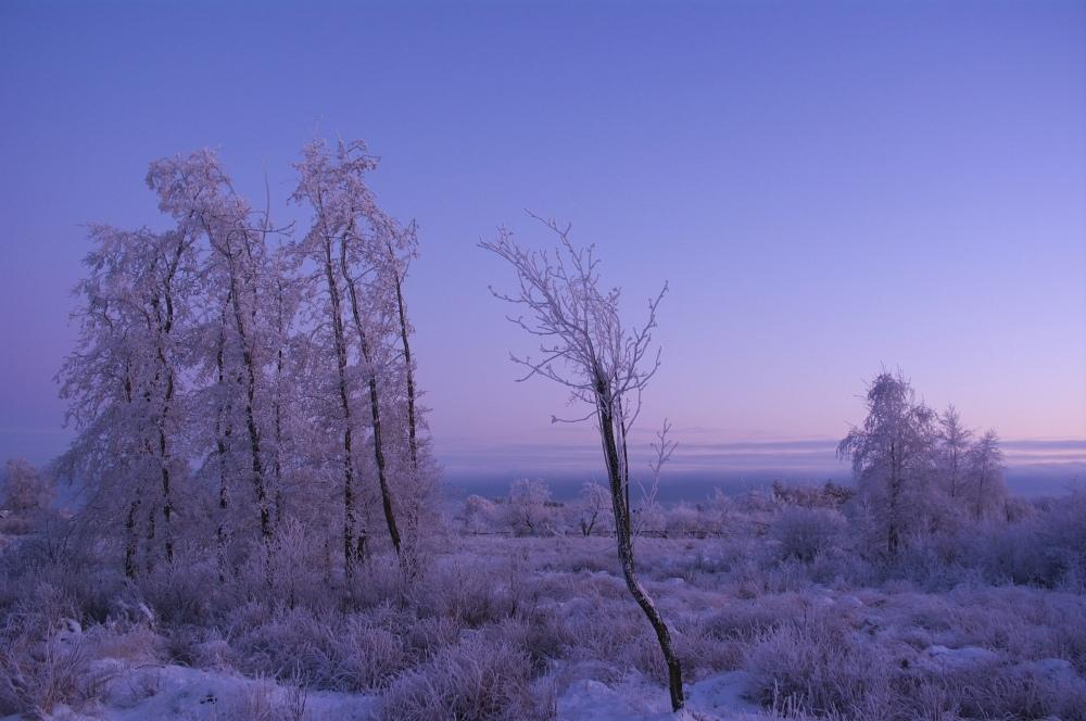 http://www.eifelmomente.de/albums/Nordeifel/Winter/2010_01_04_Sonnenuntergang_im_Winterwunderland/2010_01_04_-_37_Winterwunderland_bei_Muetzenich_DNG_bearb.jpg