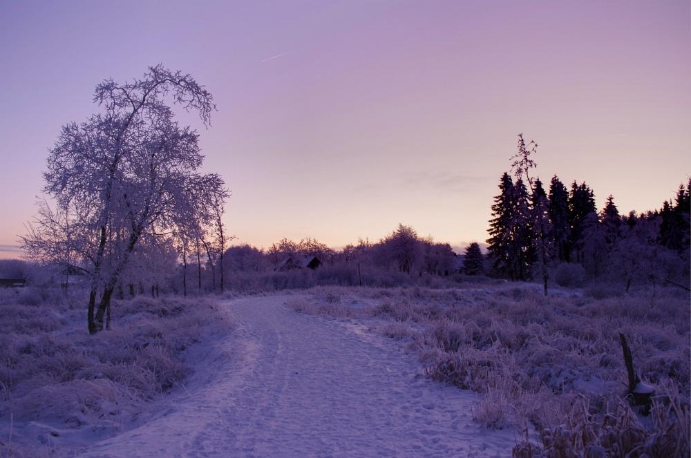 http://www.eifelmomente.de/albums/Nordeifel/Winter/2010_01_04_Sonnenuntergang_im_Winterwunderland/2010_01_04_-_39_Winterwunderland_bei_Muetzenich_DRI_bearb.jpg