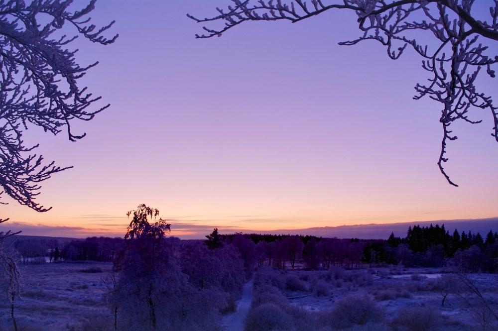 http://www.eifelmomente.de/albums/Nordeifel/Winter/2010_01_04_Sonnenuntergang_im_Winterwunderland/2010_01_04_-_48_Winterwunderland_bei_Muetzenich_DRI_bearb.jpg