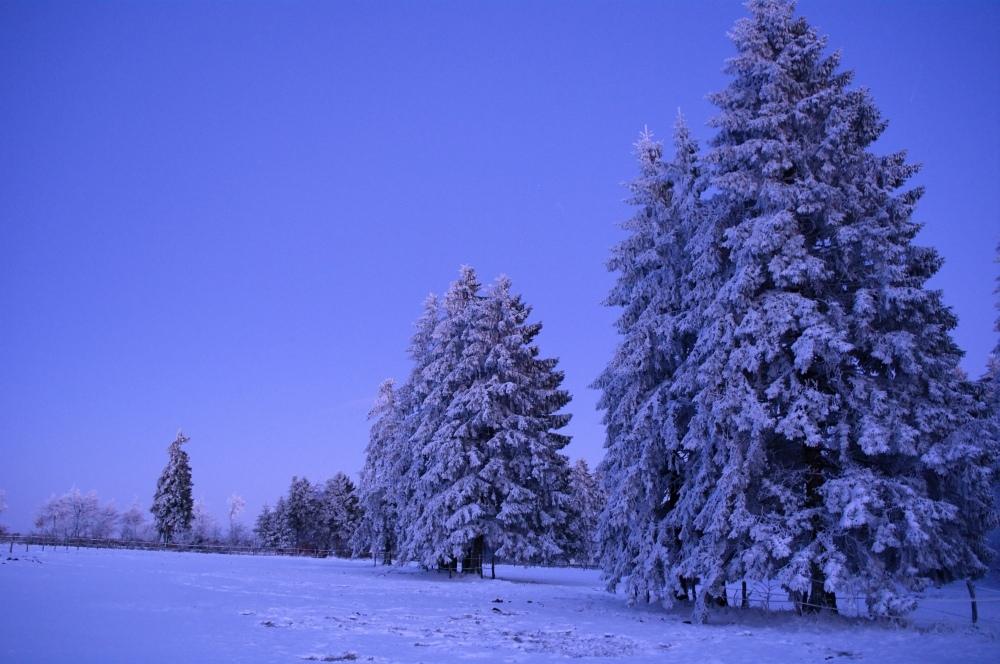 http://www.eifelmomente.de/albums/Nordeifel/Winter/2010_01_04_Sonnenuntergang_im_Winterwunderland/2010_01_04_-_58_Winterwunderland_bei_Muetzenich_DNG_bearb.jpg