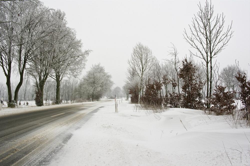 http://www.eifelmomente.de/albums/Nordeifel/Winter/2010_01_09_Schneewetter_im_Winterwunderland/2010_01_09_-_70_Schneewetter_im_Winterwunderland_DNG_bearb.jpg