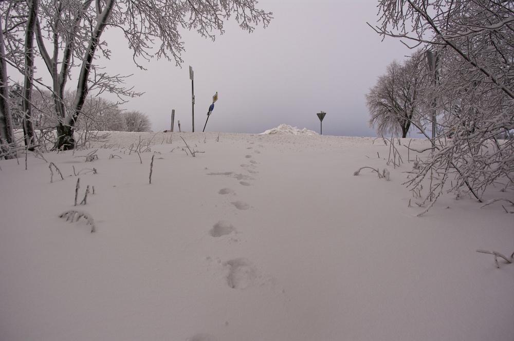 http://www.eifelmomente.de/albums/Nordeifel/Winter/2010_12_17-18_Winterfotos_u_Schloss_Merode/2010_12_17_-_015_Morgens_in_Raffelsbrand_DNG_bearb.jpg
