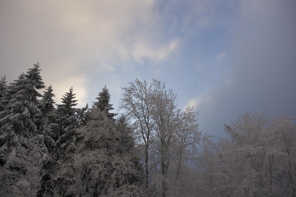 http://www.eifelmomente.de/albums/Nordeifel/Winter/2010_12_17-18_Winterfotos_u_Schloss_Merode/2010_12_17_-_033_Morgens_in_Raffelsbrand_DNG_bearb.jpg