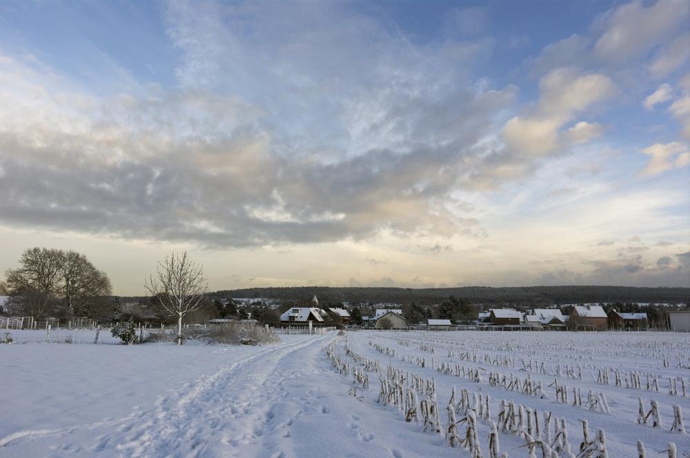 http://www.eifelmomente.de/albums/Nordeifel/Winter/2010_12_17-18_Winterfotos_u_Schloss_Merode/2010_12_17_-_049_Berg_bei_Mausbach_DNG_bearb.jpg