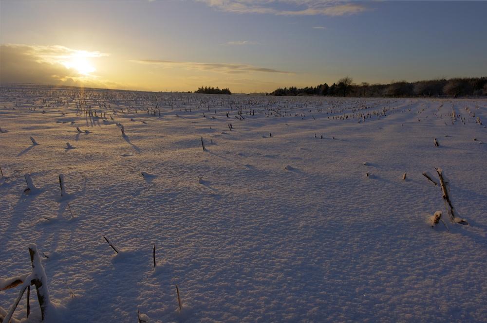 http://www.eifelmomente.de/albums/Nordeifel/Winter/2010_12_17-18_Winterfotos_u_Schloss_Merode/2010_12_17_-_062_Berg_bei_Mausbach_HDR_bearb.jpg