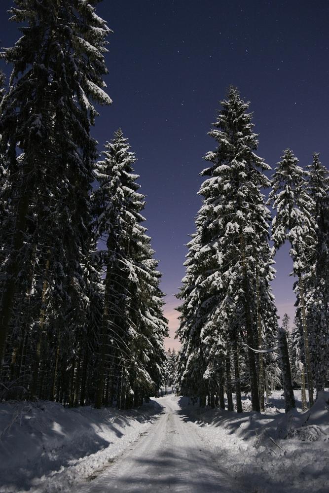 http://www.eifelmomente.de/albums/Nordeifel/Winter/2010_12_20_Sonnenuntergang_Eschweiler_u_Vollmond/2010_12_20_-_143_Vollmond_im_Wald_bei_Raffelsbrand_DNG_bearb_ausschn.jpg
