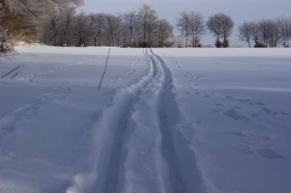 http://www.eifelmomente.de/albums/Nordeifel/Winter/2010_12_25_Tiefschnee_Simmerath/2010_12_25_-_061_Wiesen_am_Forsthaus_Simmerath_DNG_bearb.jpg