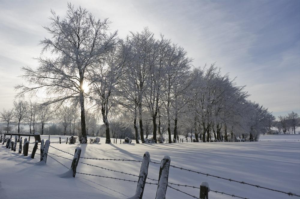 http://www.eifelmomente.de/albums/Nordeifel/Winter/2010_12_25_Tiefschnee_Simmerath/2010_12_25_-_081_Wiesen_am_Forsthaus_Simmerath_DNG_bearb.jpg