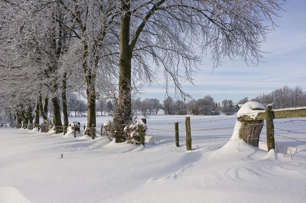 http://www.eifelmomente.de/albums/Nordeifel/Winter/2010_12_25_Tiefschnee_Simmerath/2010_12_25_-_092_Wiesen_am_Forsthaus_Simmerath_DNG_bearb.jpg