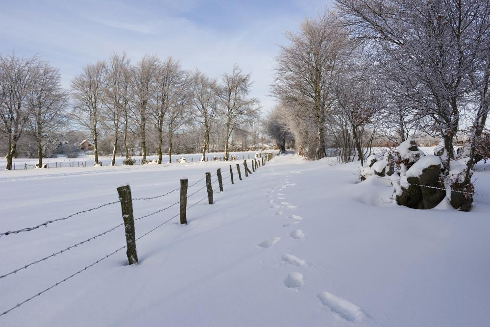 http://www.eifelmomente.de/albums/Nordeifel/Winter/2010_12_25_Tiefschnee_Simmerath/2010_12_25_-_100_Wiesen_am_Forsthaus_Simmerath_DNG_bearb_ausschn.jpg
