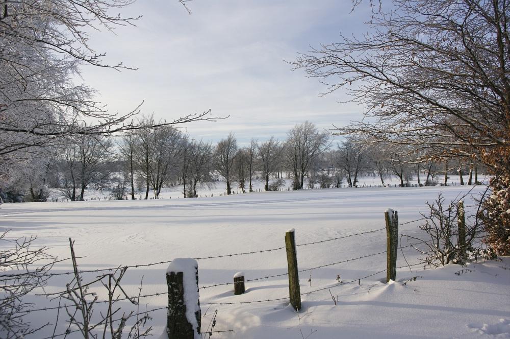 http://www.eifelmomente.de/albums/Nordeifel/Winter/2010_12_25_Tiefschnee_Simmerath/2010_12_25_-_104_Wiesen_am_Forsthaus_Simmerath_DNG_bearb.jpg