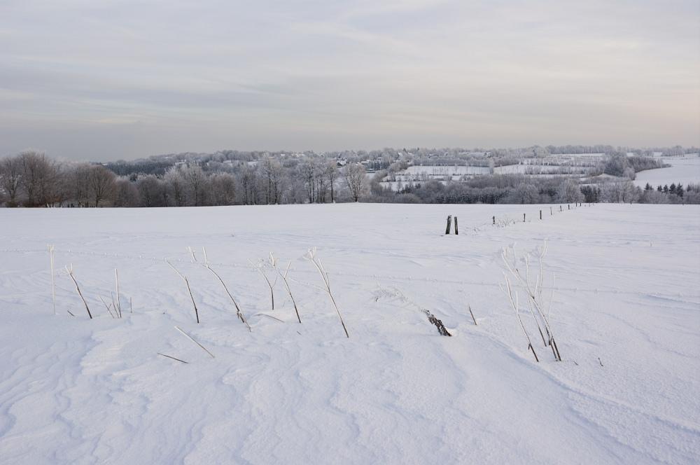 http://www.eifelmomente.de/albums/Nordeifel/Winter/2010_12_25_Tiefschnee_Simmerath/2010_12_25_-_180_Wiesen_am_Forsthaus_Simmerath_DNG_bearb.jpg