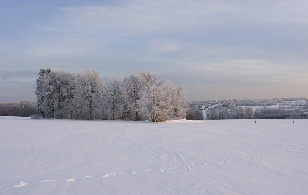 http://www.eifelmomente.de/albums/Nordeifel/Winter/2010_12_25_Tiefschnee_Simmerath/2010_12_25_-_189_Wiesen_am_Forsthaus_Simmerath_DNG_bearb_ausschn.jpg
