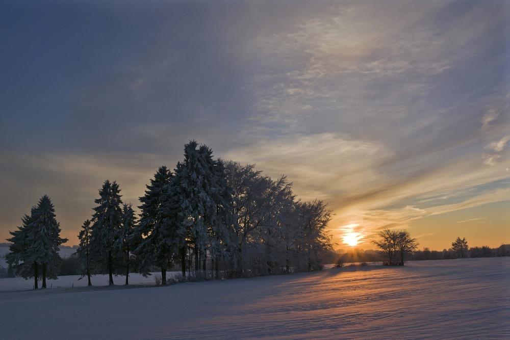 http://www.eifelmomente.de/albums/Nordeifel/Winter/2010_12_25_Tiefschnee_Simmerath/2010_12_25_-_198_Wiesen_am_Forsthaus_Simmerath_DNG_bearb_ausschn.jpg