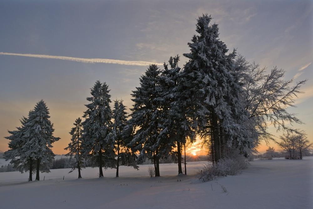 http://www.eifelmomente.de/albums/Nordeifel/Winter/2010_12_25_Tiefschnee_Simmerath/2010_12_25_-_211_Wiesen_am_Forsthaus_Simmerath_DNG_ausschn_bearb.jpg