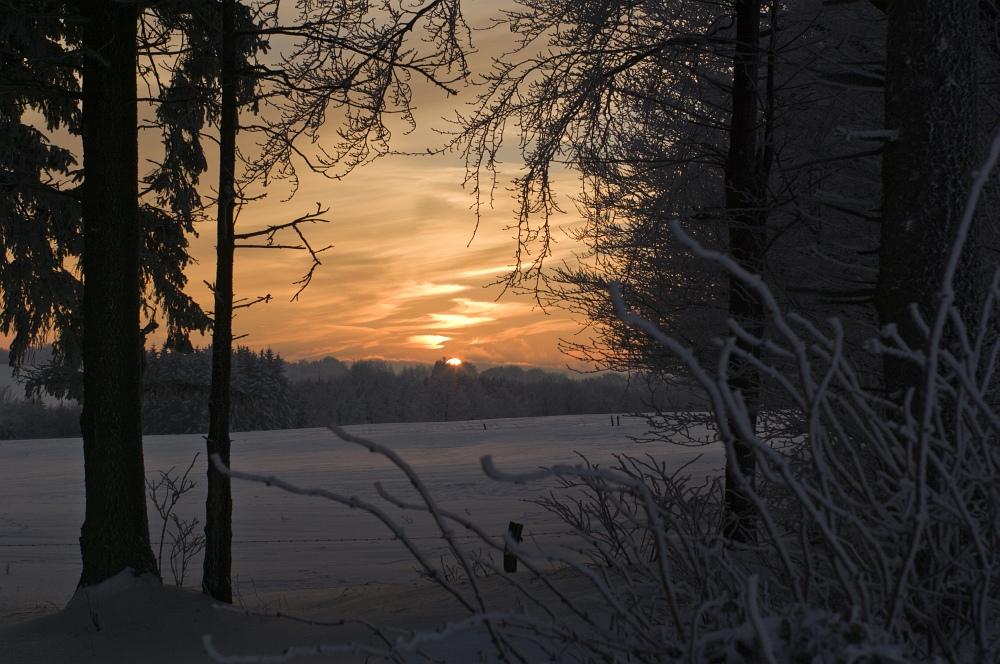 http://www.eifelmomente.de/albums/Nordeifel/Winter/2010_12_25_Tiefschnee_Simmerath/2010_12_25_-_213_Wiesen_am_Forsthaus_Simmerath_DNG_bearb.jpg