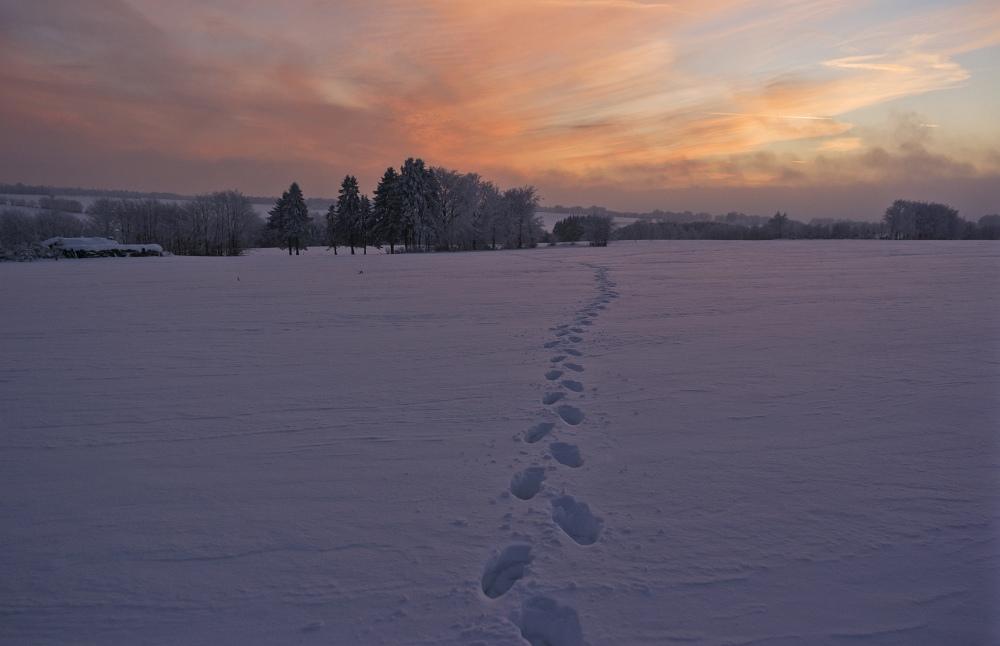http://www.eifelmomente.de/albums/Nordeifel/Winter/2010_12_25_Tiefschnee_Simmerath/2010_12_25_-_233_Wiesen_am_Forsthaus_Simmerath_DNG_bearb.jpg
