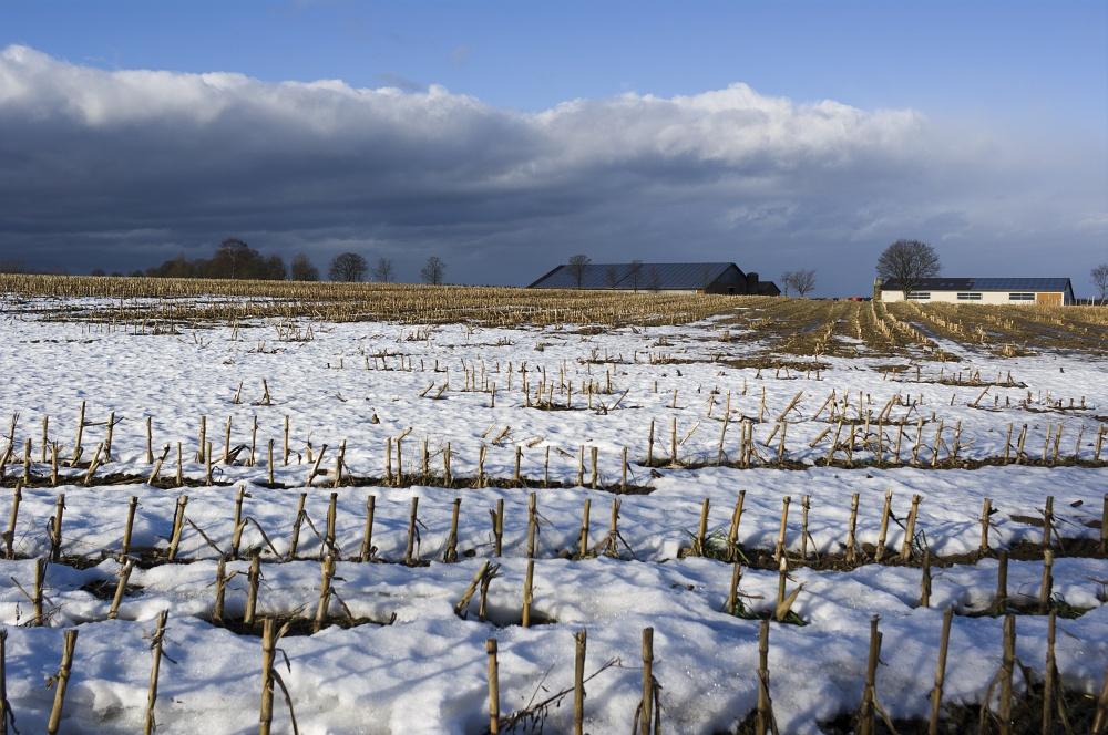 http://www.eifelmomente.de/albums/Nordeifel/Winter/2011_01_08-14_Hochwasser_Eifelregion/2011_01_08_-_001_Bei_Huertgen_DNG_bearb.jpg