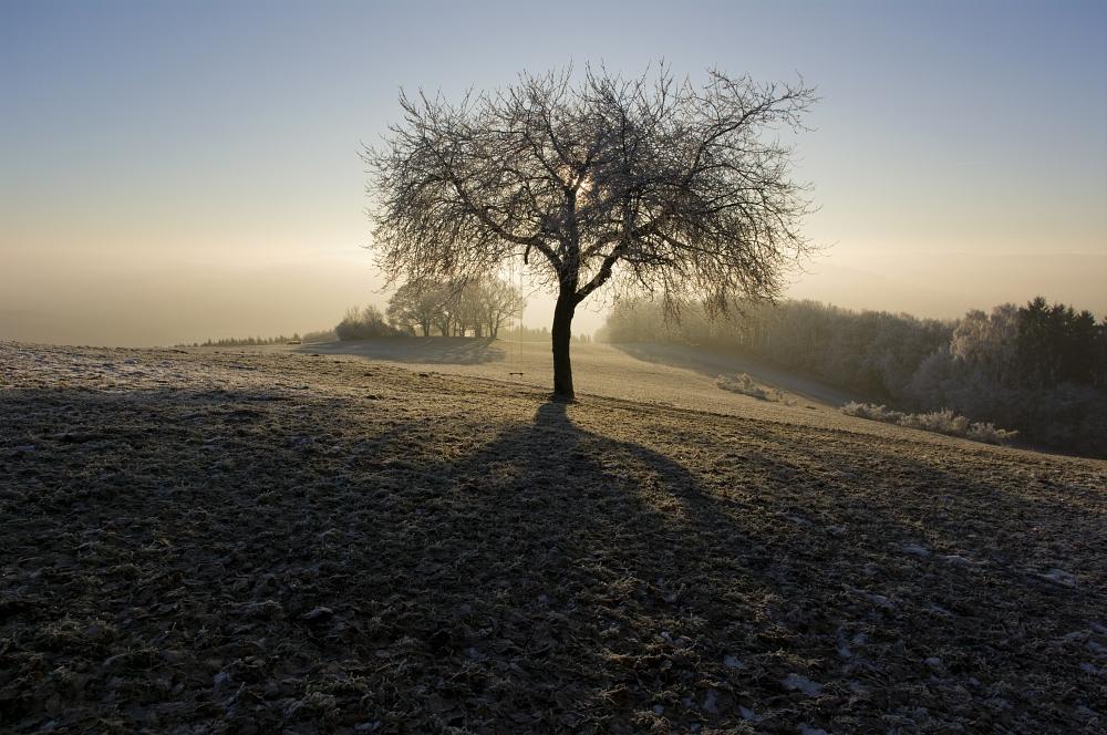 http://www.eifelmomente.de/albums/Nordeifel/Winter/2011_02_01_Sonnenaufgang_Hoevel/2011_02_01_-_183_Sonnenaufgang_Hechelscheider_Hoevel_DNG_bearb.jpg
