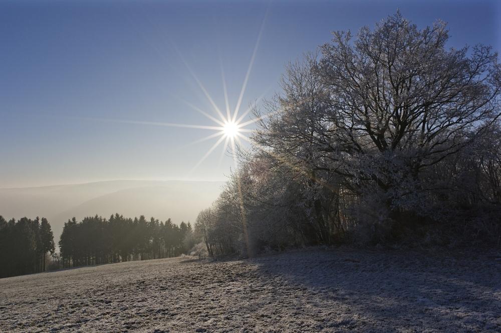 http://www.eifelmomente.de/albums/Nordeifel/Winter/2011_02_01_Sonnenaufgang_Hoevel/2011_02_01_-_229_Sonnenaufgang_Hechelscheider_Hoevel_DNG_bearb.jpg