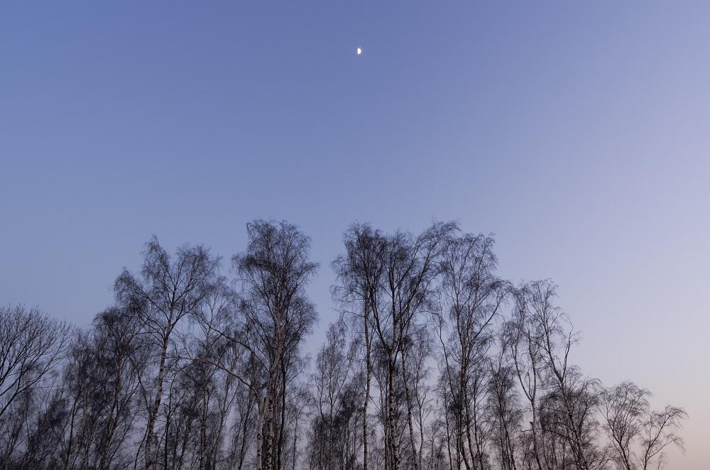 http://www.eifelmomente.de/albums/Nordeifel/Winter/2012_01_31_Sonnenuntergang_Haarberg_u_Nachts_Wald/2012_01_31_-_074_Aachen_Haarberg_DNG_bearb.jpg