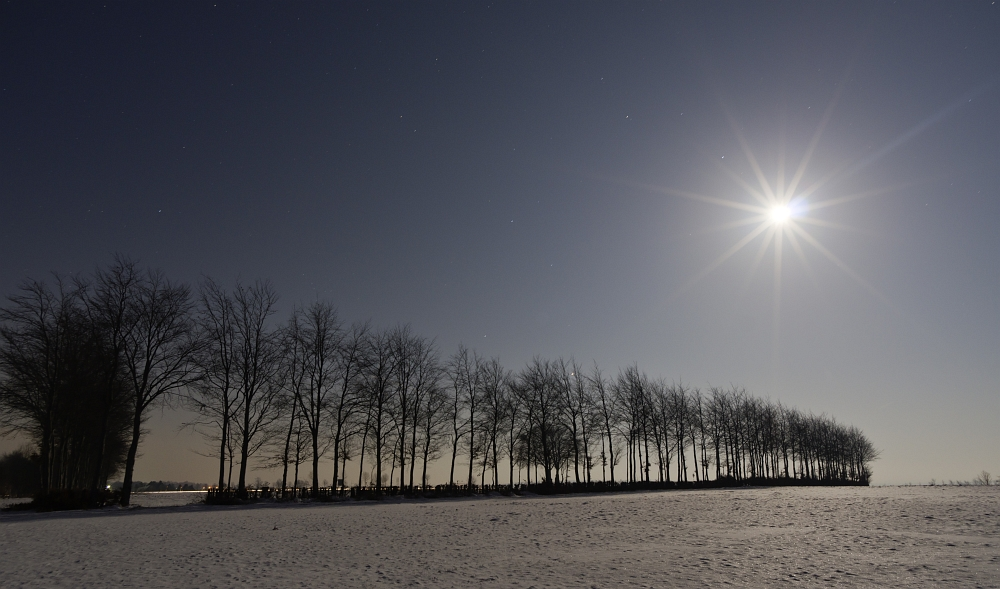 http://www.eifelmomente.de/albums/Nordeifel/Winter/2012_02_08_Vollmondnacht_Rursee/2012_02_08_-_01_Bei_Strauch_DNG_bearb_ausschn.jpg